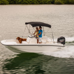 170 Boston Whaler Dauntless 2016
